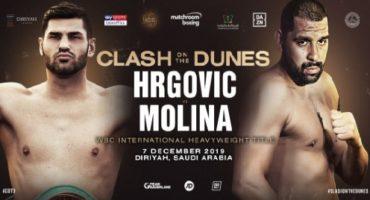 "WORLD TITLE CHALLENGER DUHAUPAS: ""HRGOVIĆ'S STYLE AND ABILITY ARE SIMILAR TO VITALI KLITSCHKO"""