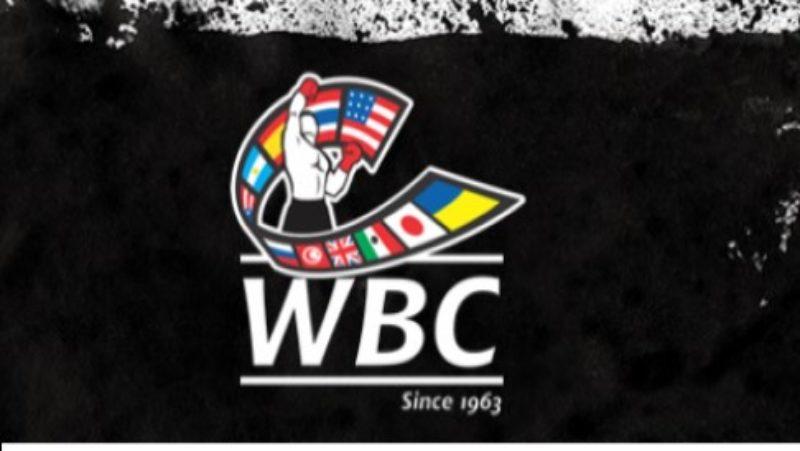 WBC Nutrition Committee: Creating Designer Eggs