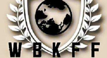 "WBKFF  Announces Inaugural PPV card Johny Hendricks vs. Brennan Ward Chris Leben vs. Phil Baroni To headline ""Rise of the Titans"""